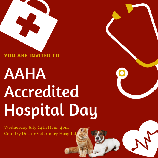 AAHA Day Invite